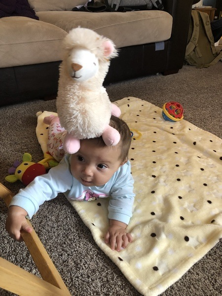 Baby Anastasia playing with a dog toy that's safe for babies